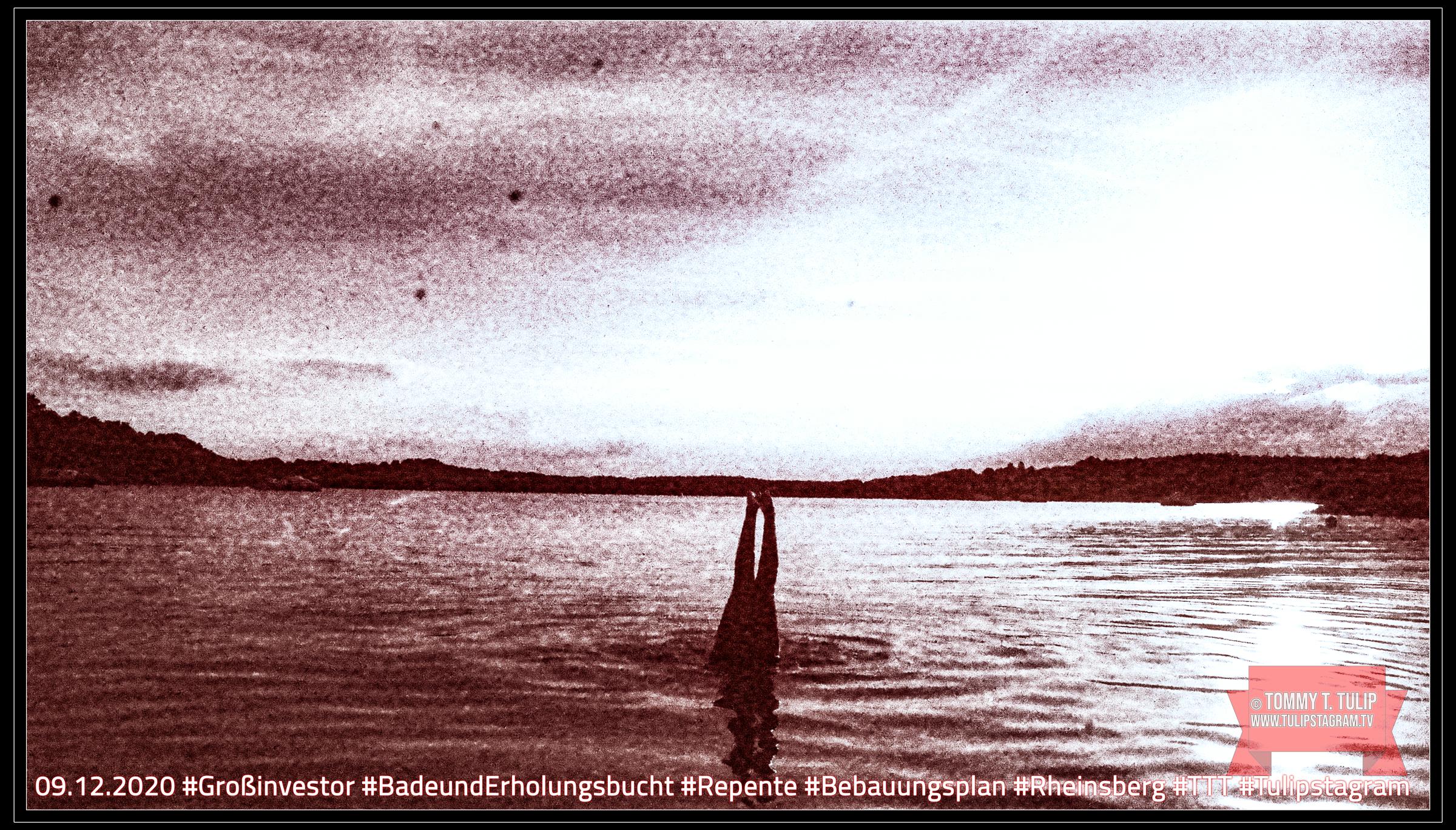 09.12.2020 #Großinvestor #BadeundErholungsbucht #Repente #Bebauungsplan #Rheinsberg #TTT #Tulipstagram